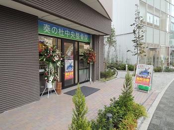 DSCN5290.jpg